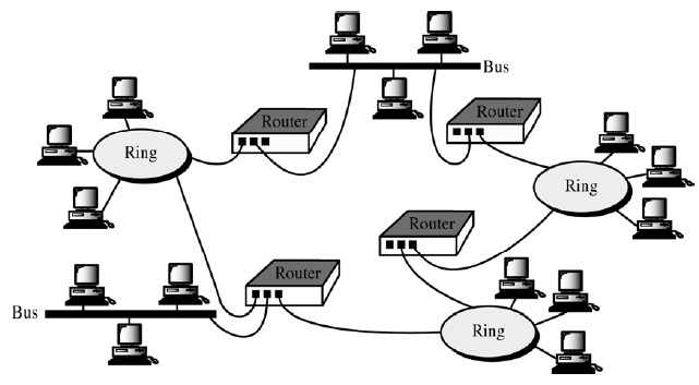 multiple interconnection networks